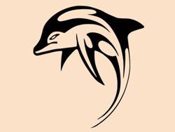Samolepky na zeď Delfín 0195