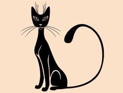 Samolepky na zeď Kočka 0451