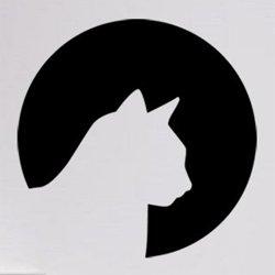 Samolepky na zeď Kočka 0478