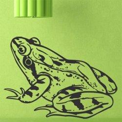 Samolepky na zeď Žába 008