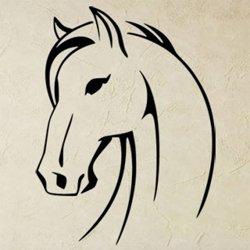 Samolepky na zeď Kůň 0349