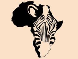 Samolepky na zeď Zebra 008