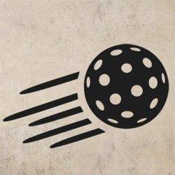 Samolepky na zeď Florbalový míček 1113