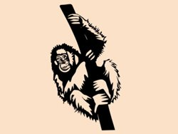 Samolepky na zeď Opice 001