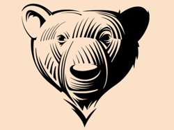 Samolepky na zeď Medvěd 001