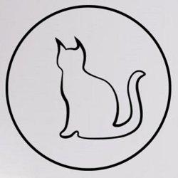Samolepky na zeď Kočka 0513