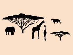 Samolepky na zeď Africké zátiší 002