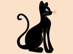 Samolepky na zeď Kočka 0466