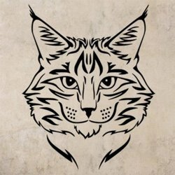 Samolepky na zeď Kočka 0461