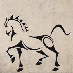 Samolepky na zeď Kůň 001
