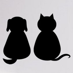 Samolepky na zeď Kočka a pes 0551