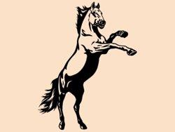 Samolepky na zeď Kůň 0384