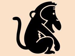 Samolepky na zeď Opička 005