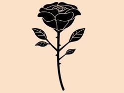 Samolepky na zeď Růže 015