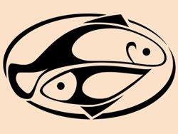Samolepky na zeď Talíř s rybami 0154
