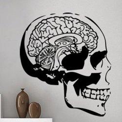 Samolepky na zeď Lebka s mozkem 1216