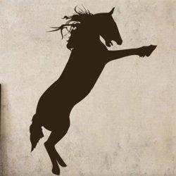Samolepky na zeď Kůň 008