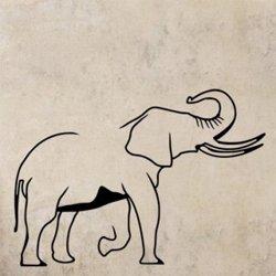 Samolepky na zeď Slon s chobotem nahoru 1152